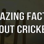 Amazing Facts About Cricket