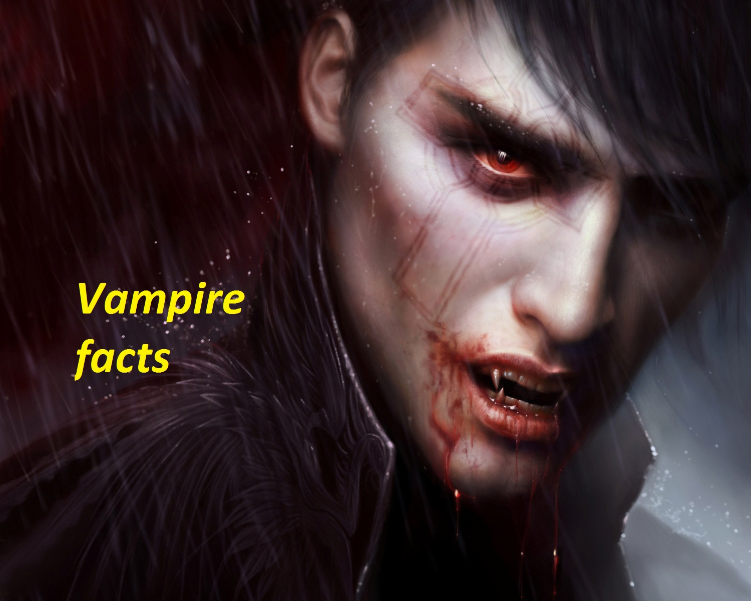 Vampire facts - A1FACTS