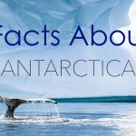 25 Interesting Facts About Antarctica