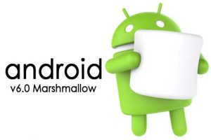 Facts About Android