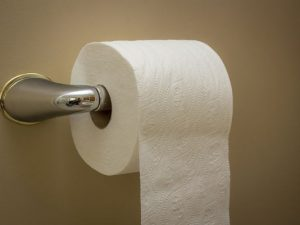 Facts About Toilets